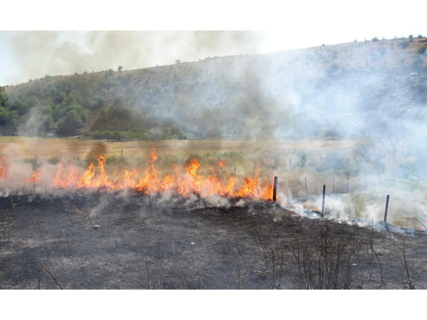 Ден на траур в три общини в памет на загиналите в пожар лесничеи