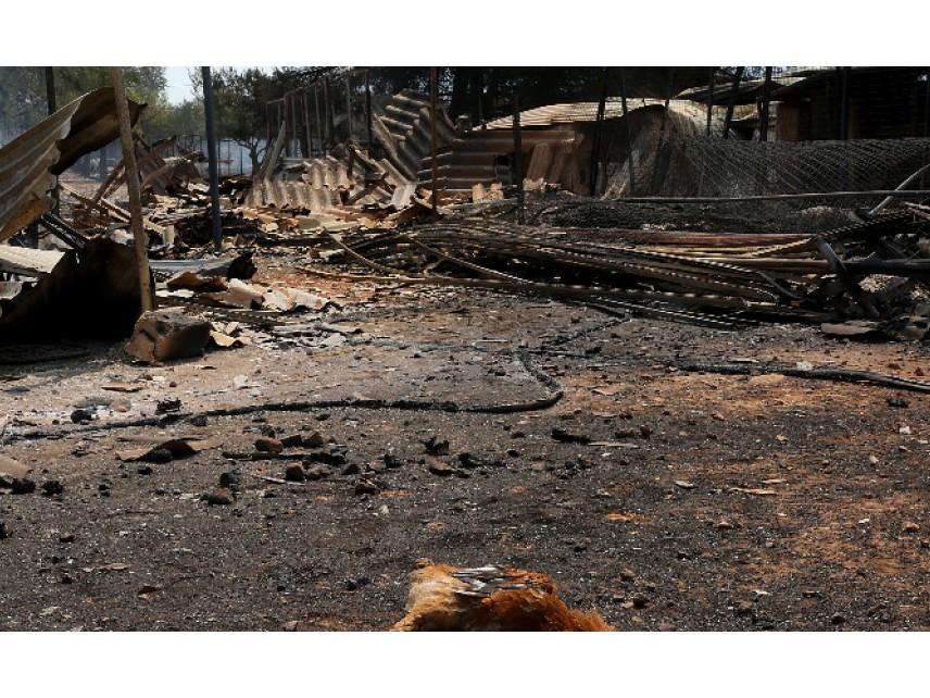 Гърция поиска помощ от чужбина за справяне с пожарите