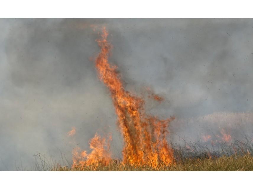 Голям пожар избухна снощи в лагера за мигранти на гръцкия остров Самос