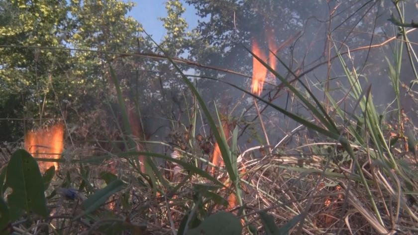 Продължават пожарите на Балканите, България помага в гасенето на огъня в Р Северна Македония